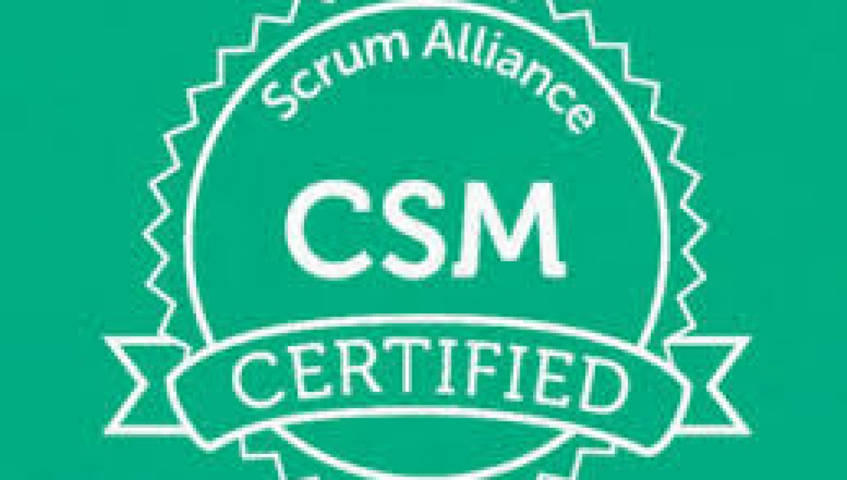 Scrum Master-Infrastructure Projects